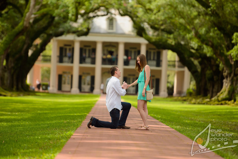 0D4 5164 Proposal session | Oak Alley Plantation | May 12, 2013