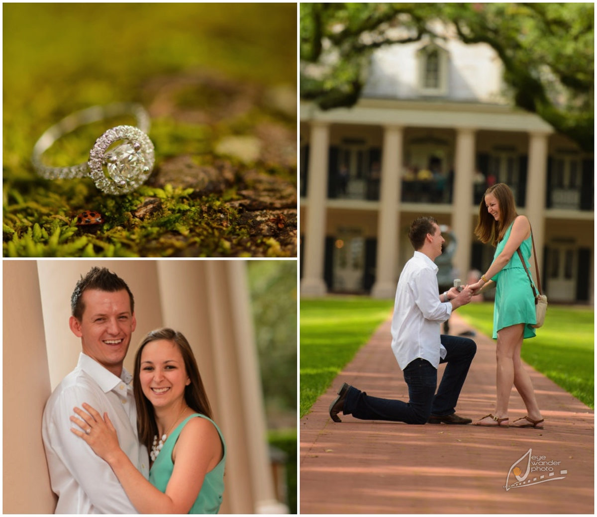 diptic1A Proposal session | Oak Alley Plantation | May 12, 2013