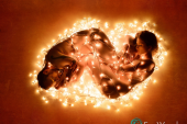art nude couple wrapped in christmas lights